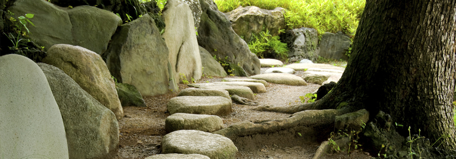 Peaceful stone pathway through green trees